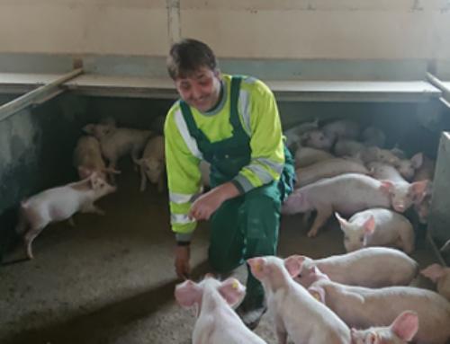 Nutri-Novo Liquid giver både mig og mine grise ro i maven